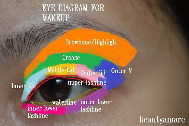 Basic eye diagram for makeup thewoomag top modern women magazine basic eye diagram for makeup ccuart Images